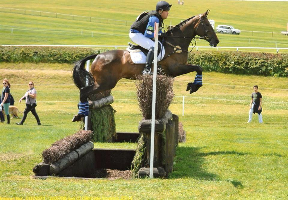 Top Tips When buying an event horse from Paul Gaff
