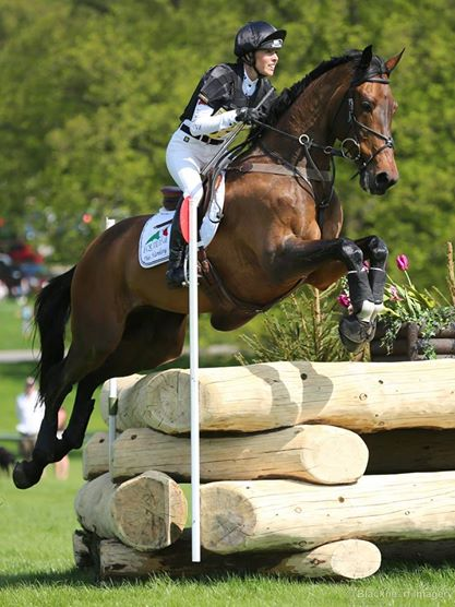 Top tips for cross country schooling by Dee Hankey – part one!