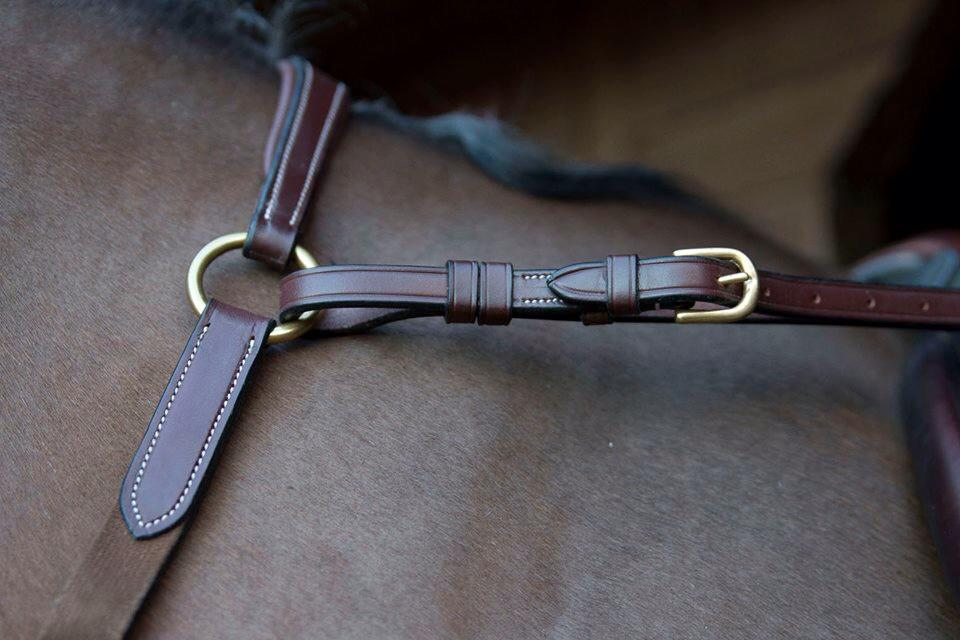 Wolds Exclusive Bling – Breastplate and Martingale Combination