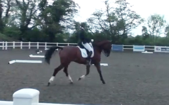 Advanced Medium Freestyle at BYRDS Inter-County. 70.17% and 1st – Anna Jesty