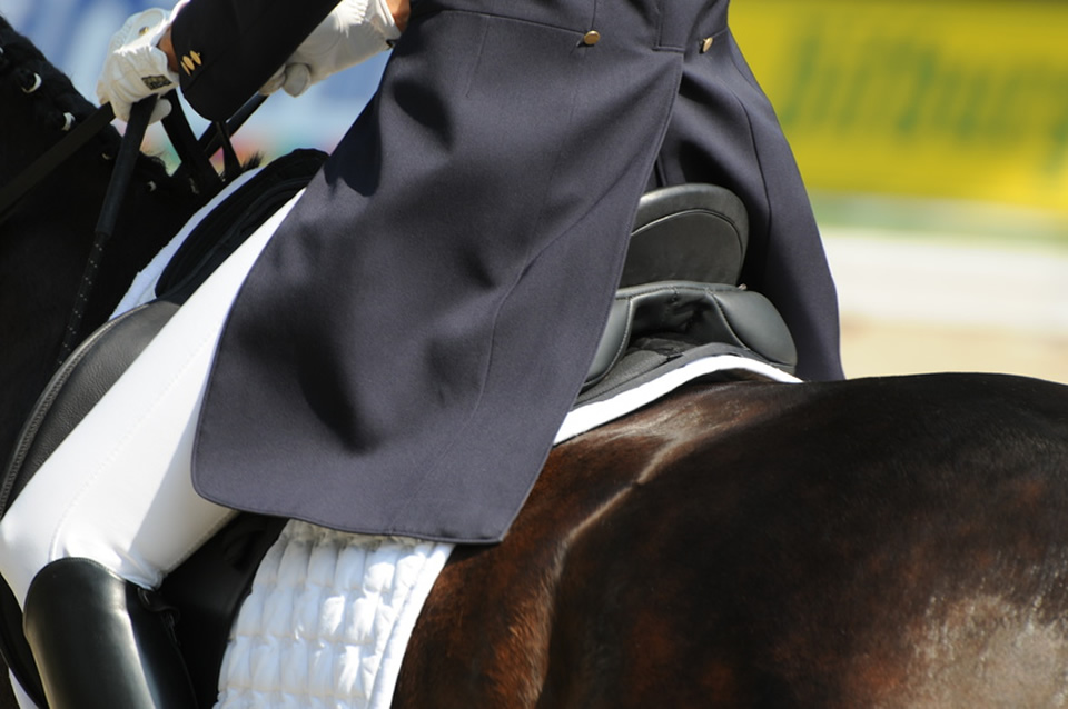 Tips for Dressage Turnout for horse & rider