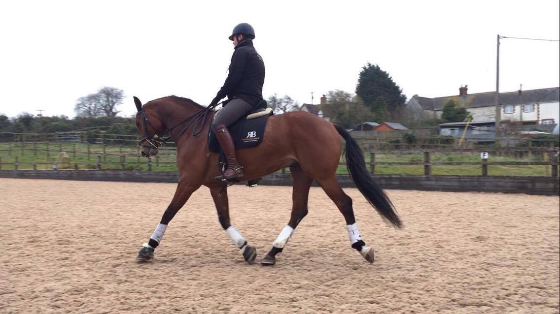 Paul Gaff Eventing tells us what he has been up to in March