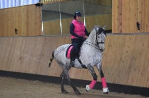 divine equestrian