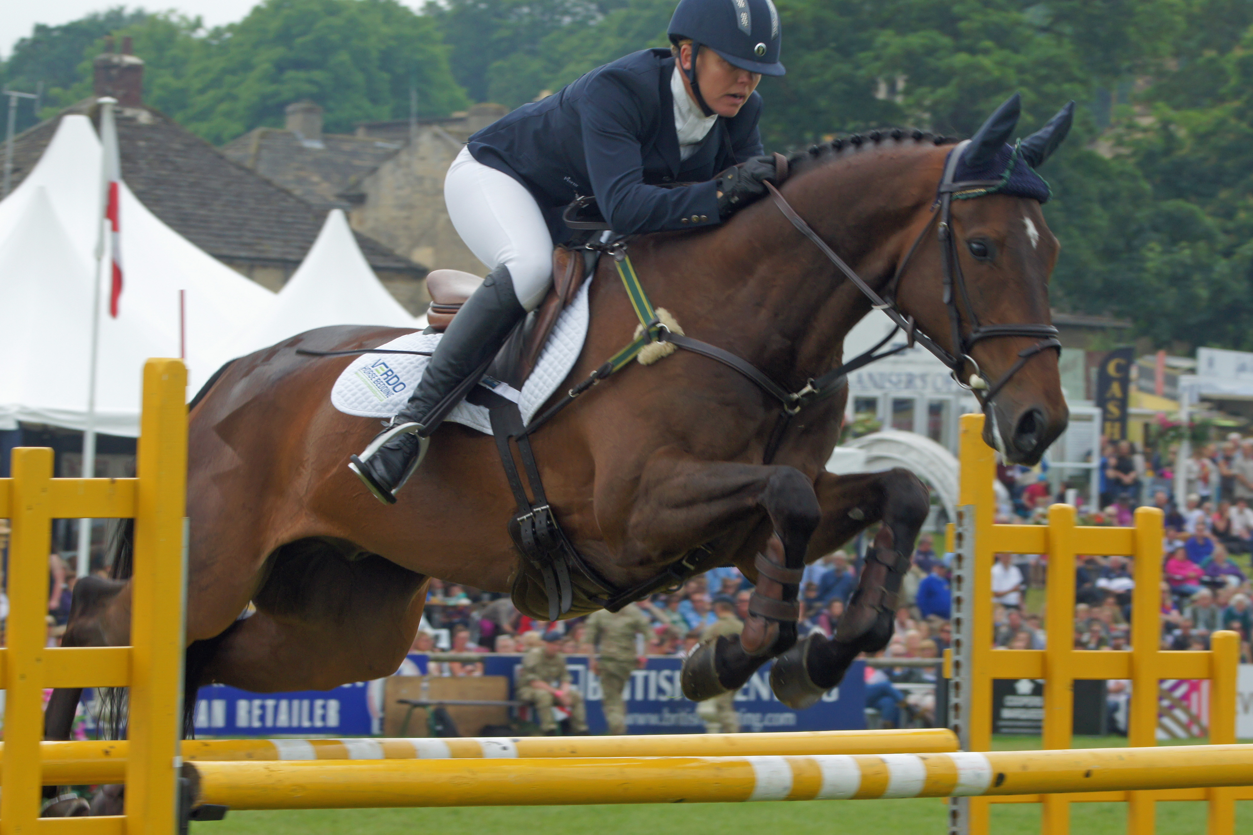 Bramham CCI*** with Birch Equestrian  – Two horses and a baby!