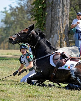 How dangerous is horse riding? Are you covered in case of an accident?