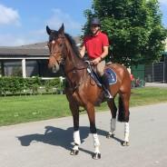 Shaun Murray reflects on Tattersall International Horse Trials #Scotstakeontatts