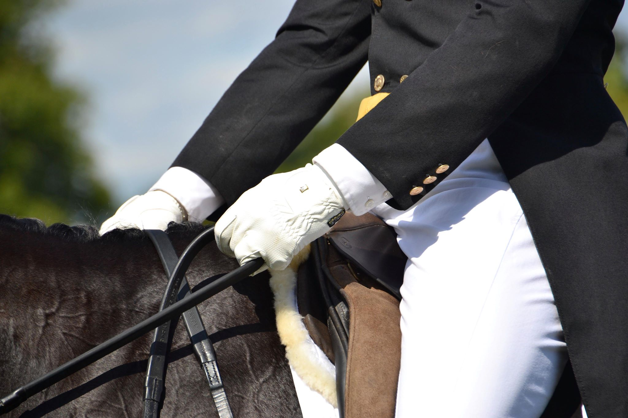 Friday's Round for Burghley Horse Trials 2018 – Dressage phase is completed
