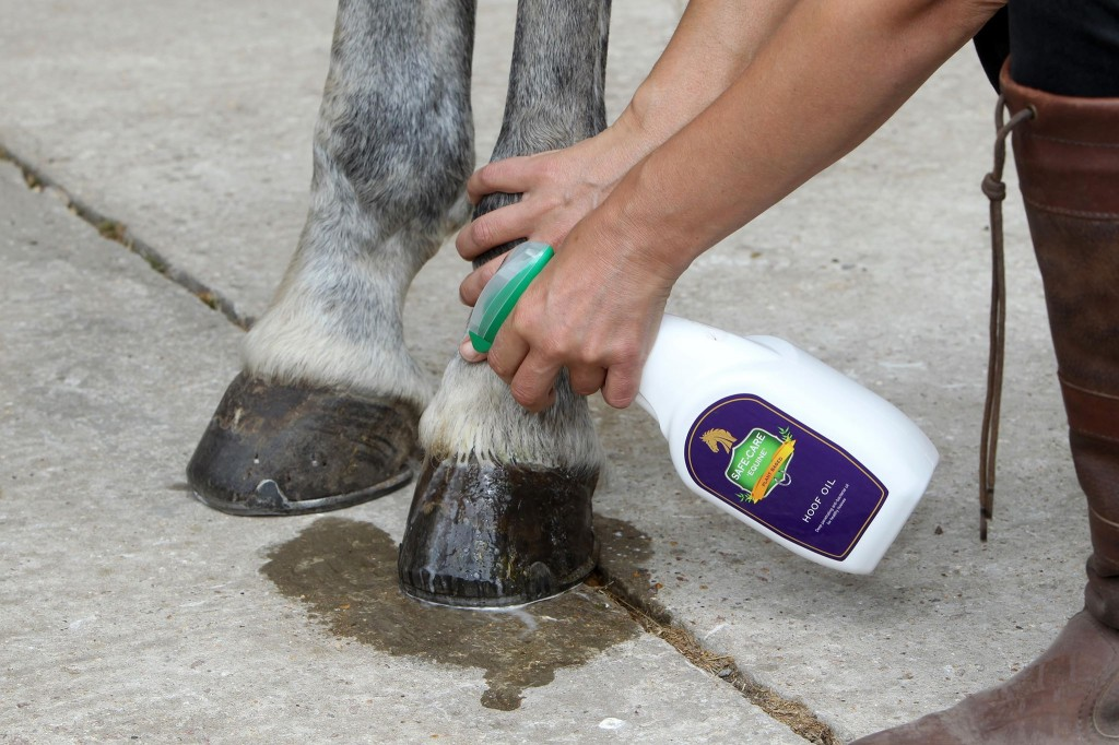 safe care equine hoof oil spray