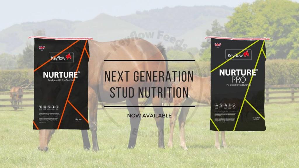 Introducing Nurture® PRO – Pre-digested Stud Balancer