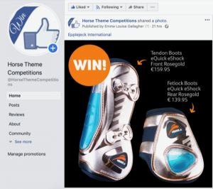 Horse Theme Competitions – Find yourself a giveaway!