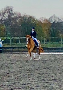 Jo Titterton reveals how 2019 has started for MCF Equestrian and Team Titterton