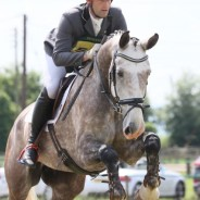 Wayne Garrick explains why it's not all sunshine when working professionally with horses
