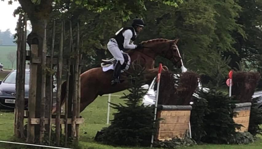Double Clear Dan :The Dressage Horse Turned Eventer Finishes 5th In The MMCUP