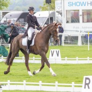 Tom Rowland and Possible Mission make their Badminton Debut in the Dressage