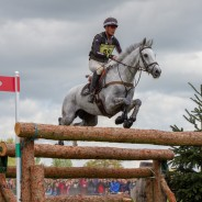 Andrew Nicholson and Swallow Springs Sitting Pretty in 4th Place After XC Badminton 2019