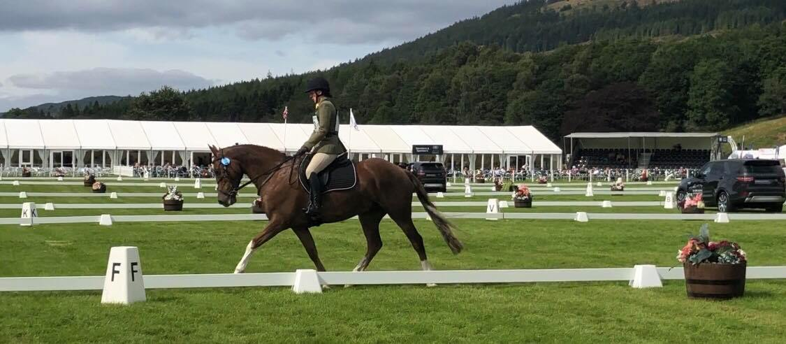 Sitting pretty after Dressage : Sarah Brown and Balhagarty Perfection at Blair Castle