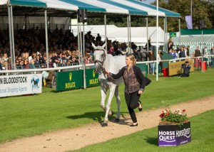 Prices are Dynamite at Burghley 2019 :The Cross Country Queen Jonelle rides Faerie Dianimo