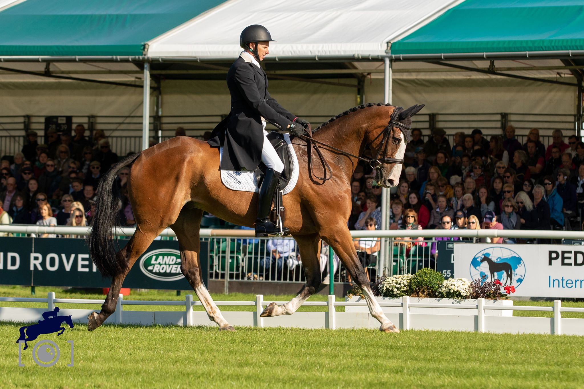 Cheshire Rider Micheal Owen Completes the Dressage at Burghley 2019
