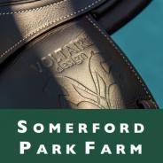 Voltaire Design Sponsors Somerford Park