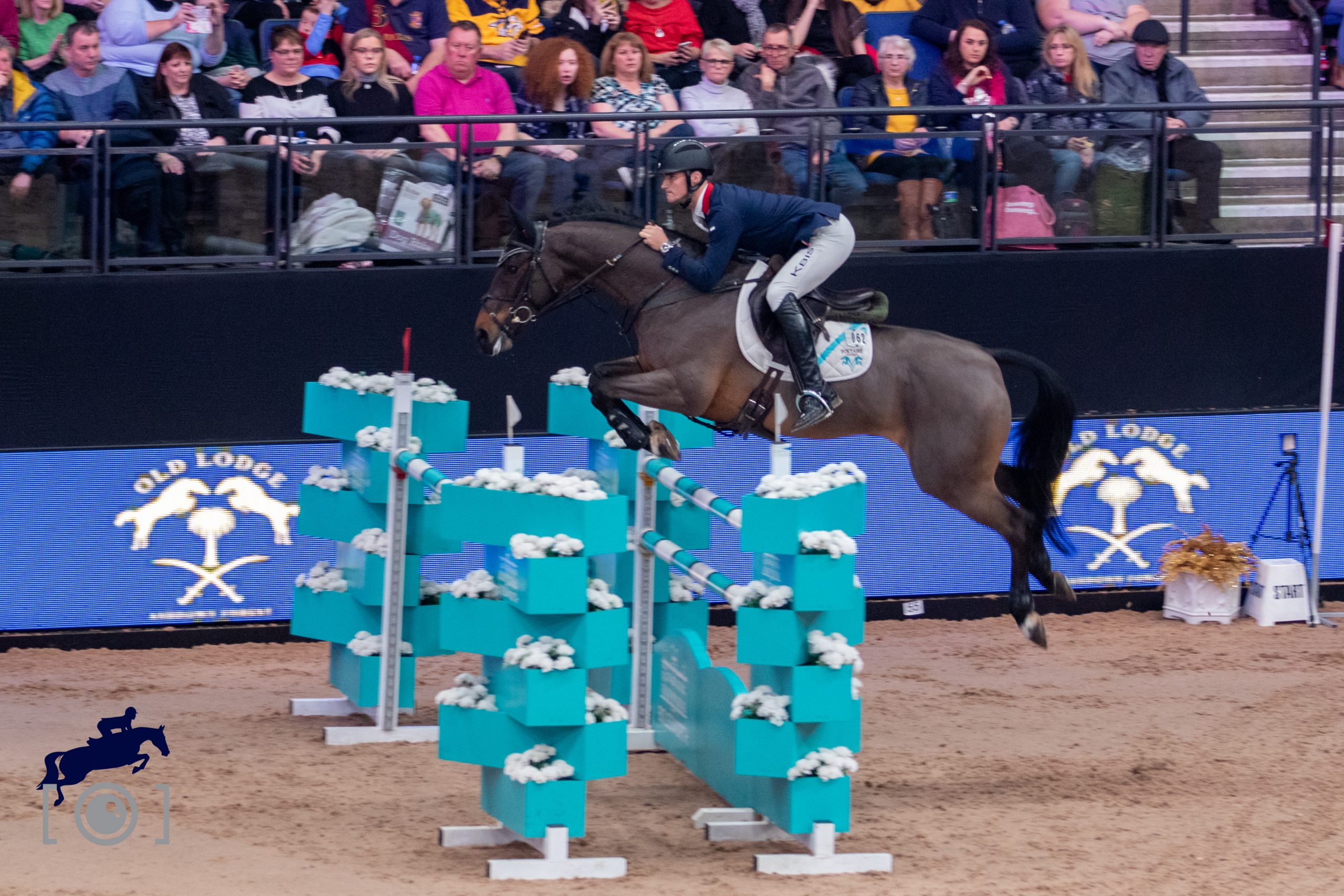 Persimmon Rode by William Fletcher is the first horse to be on both Eventing and Showjumping teams for Great Britain