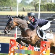 Fantastic Showjumping Exercise from Will Fletcher
