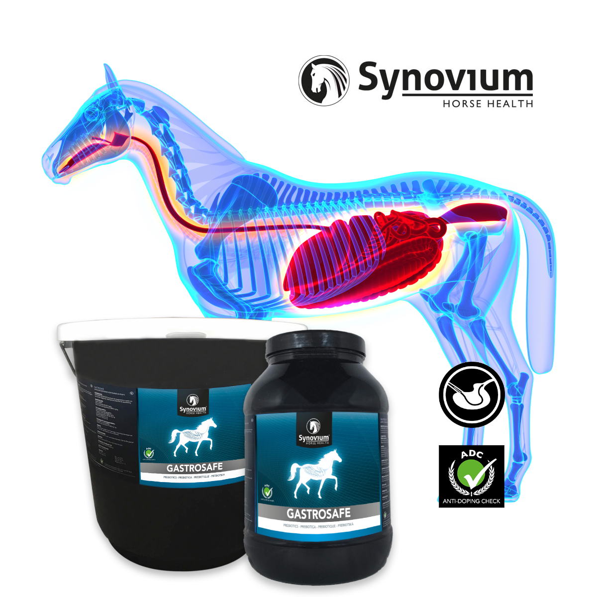 Understanding Equine Ulcers with Synovium's vets