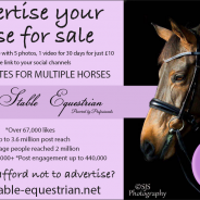 Advertise your horses for sale with us!!