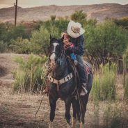 Training Horses – Timothy Show give us some Tips